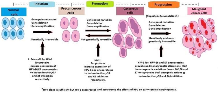 precancerous cells on cervix hpv cheloo in zgomot de masele