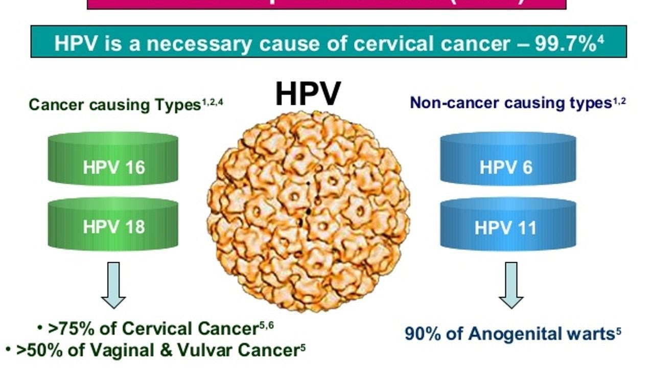 how is hpv cancer caused cancer renal inmunoterapia
