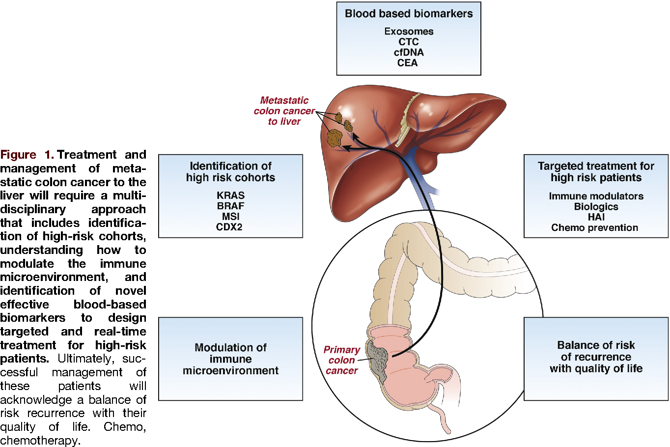 virus papiloma humano genotipo 56 human papillomavirus (hpv) associated cancer