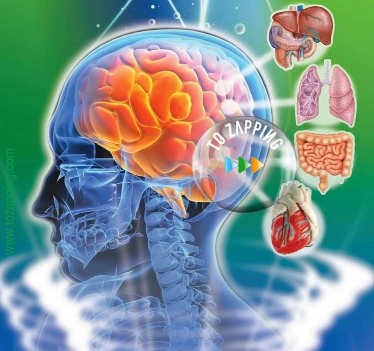 Dejar de Fumar | Fumar tabaco | Hipnosis