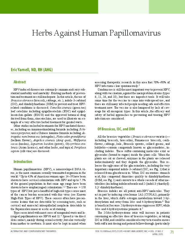 human papillomavirus in south africa