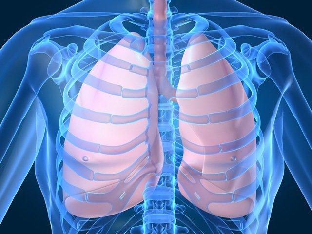 Opt alimente care curăță plămânii de toxine - Doctorul zilei