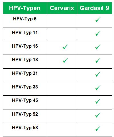 HPV HPV - Traducere în română - exemple în germană | Reverso Context