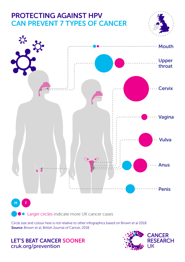 how often does hpv become cancer