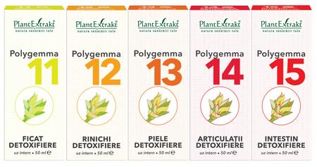 detoxifiere cu homeopatie