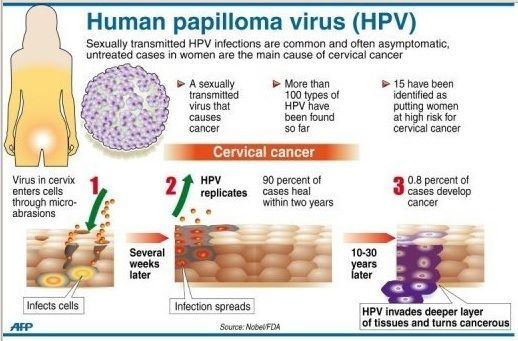 hpv virus shows in pap smear
