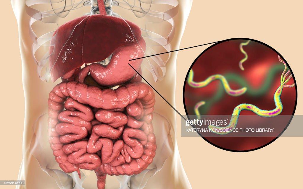hpv virus symptoms in hindi