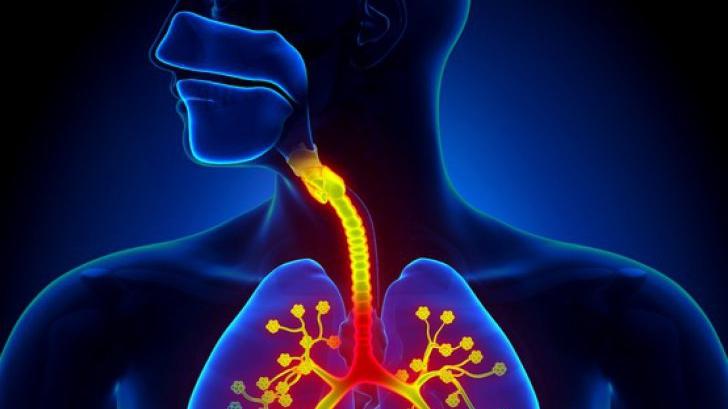 curatarea plamanilor la fumatori