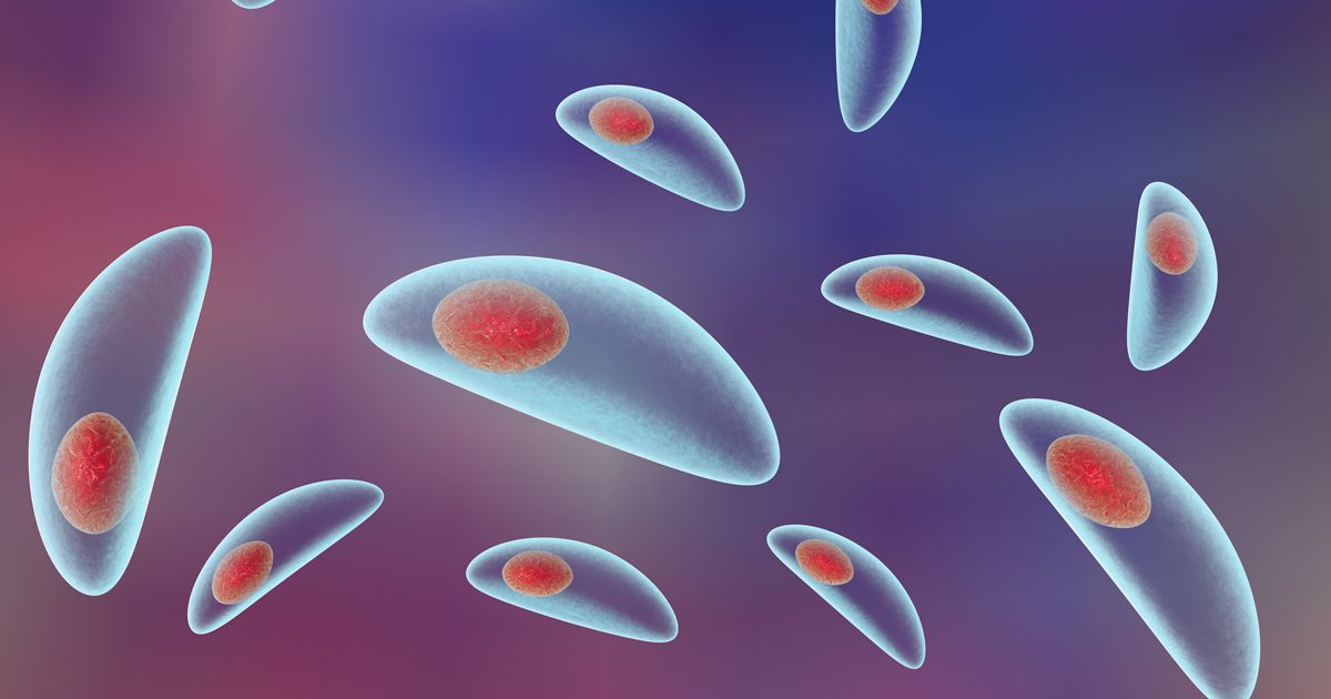 toxoplasmoza tratament medicamentos