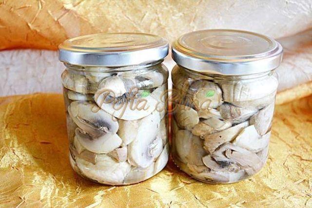 Plecați la ciuperci, au cules bombe: ce au găsit într-o pădure din Harghita