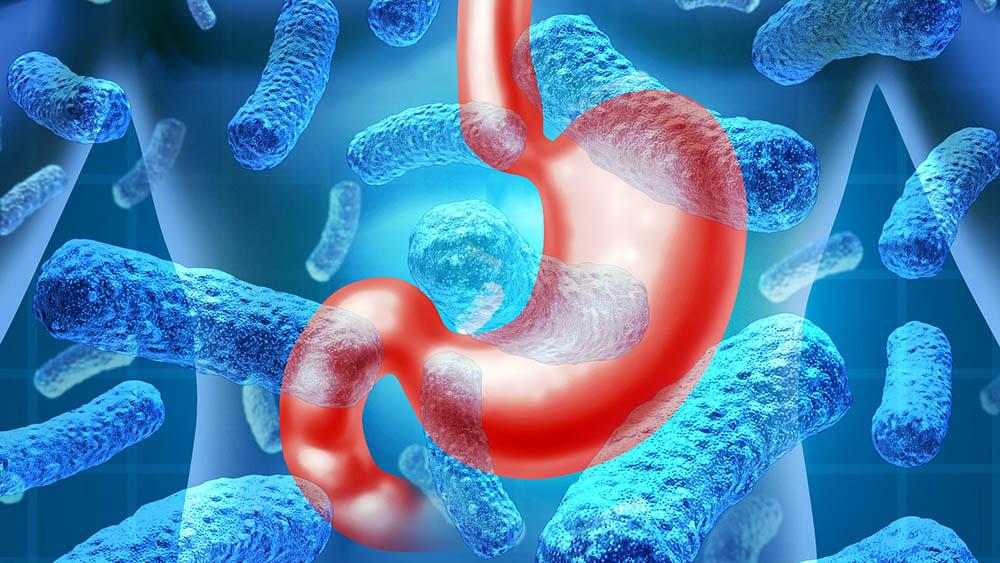 Helicobacter pylori, cea mai raspandita bacterie gastrica