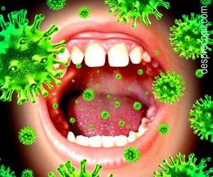 virus del papiloma por pcr virusi mac