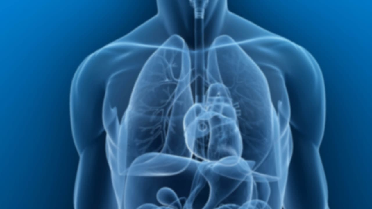 benign cancer in lungs cancer la san faza 2
