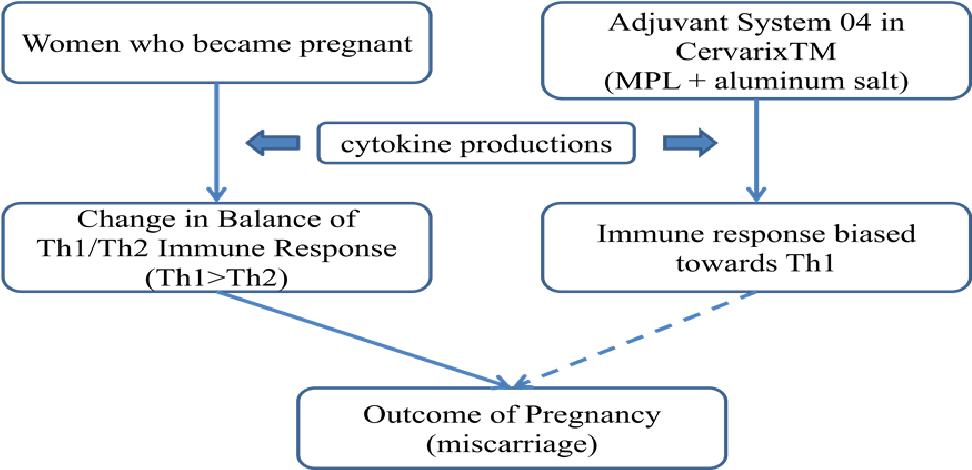 human papillomavirus cause miscarriage