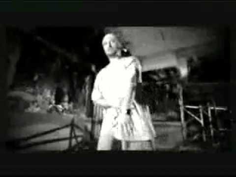 Cheloo - In Zgomot De Masele Supte + Versuri | Hip Hop