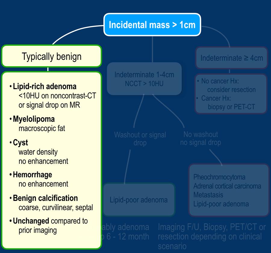 cancer malign vs benign