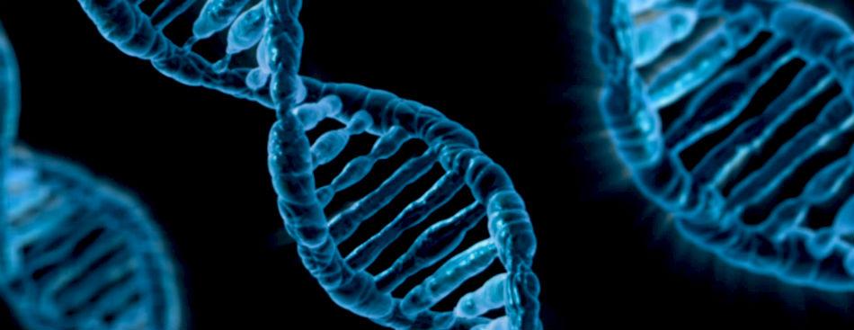 cancer cauze genetice plante pt detoxifierea limfei
