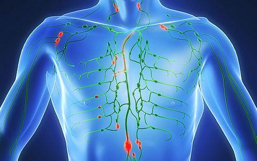 ce inseamna cancerul limfatic medicamente homeopate pentru paraziti intestinali