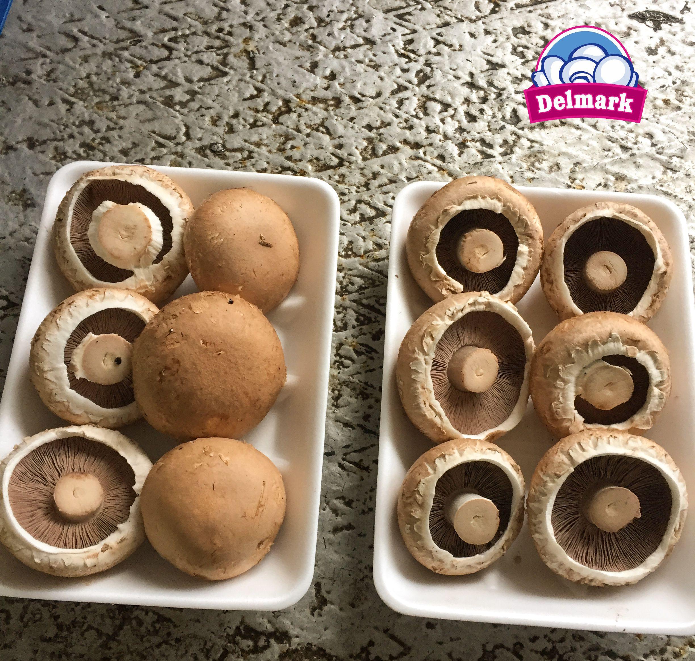 Ciuperci portobello la cuptor