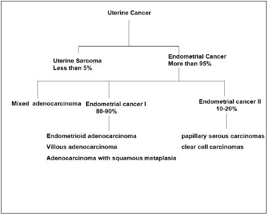 endometrial cancer protective factors