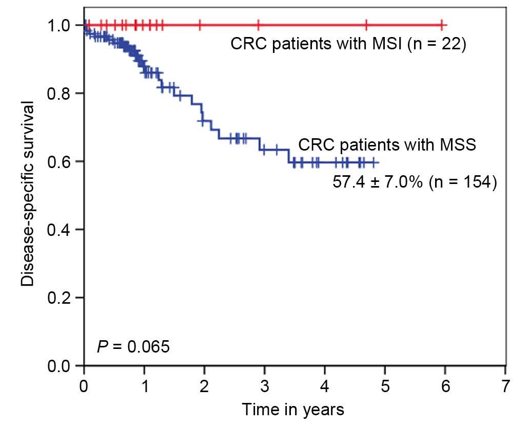 cancer colon mss