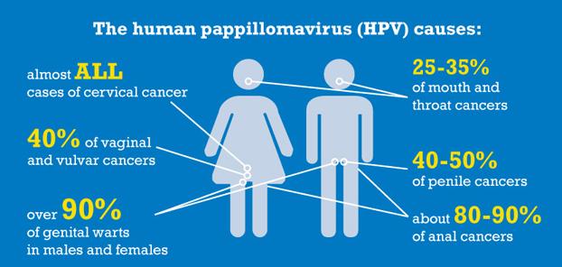 humaan papillomavirus voor mannen