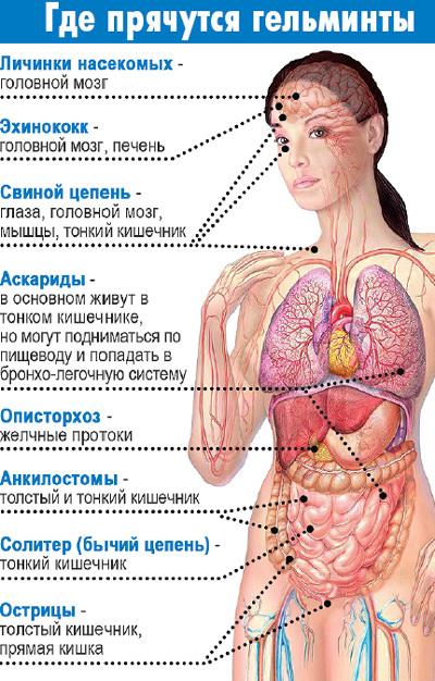 paraziti v tele diagnostika