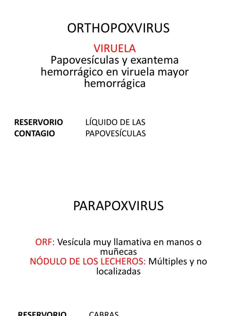 Mini Manual Medicina Interna Catolica.pdf