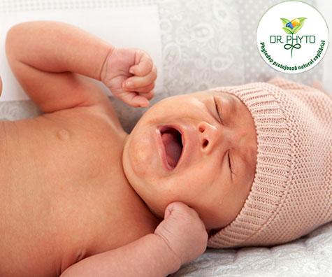 flatulenta bebe