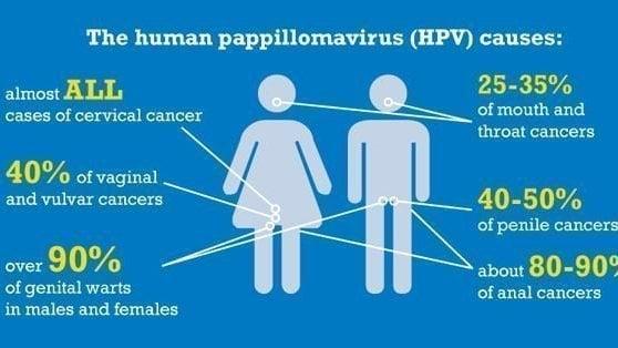 dysbiosis lactofiltrum papilloma virus boca