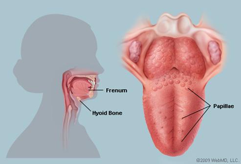 hpv tongue warts treatment
