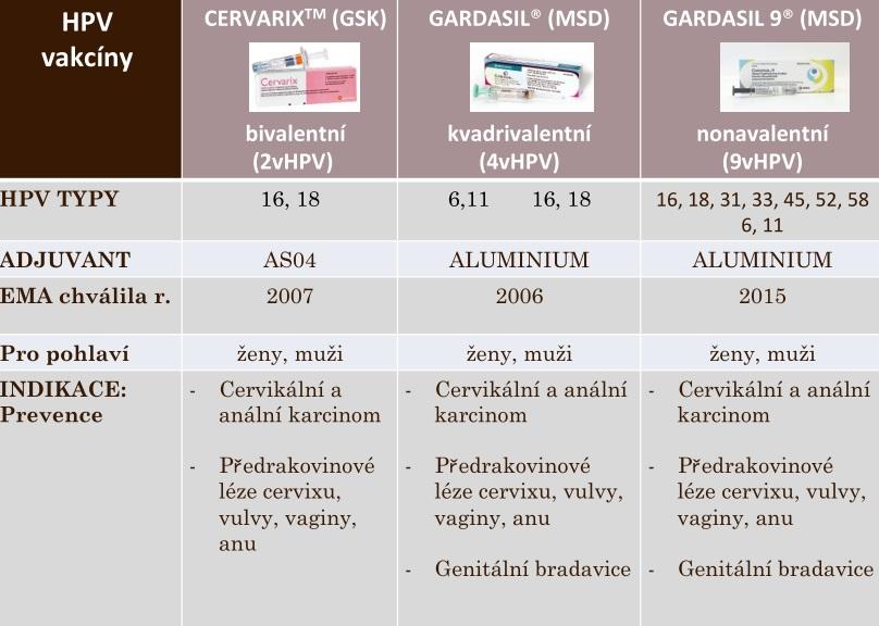 papilloma virus percentuale tumore ind v england