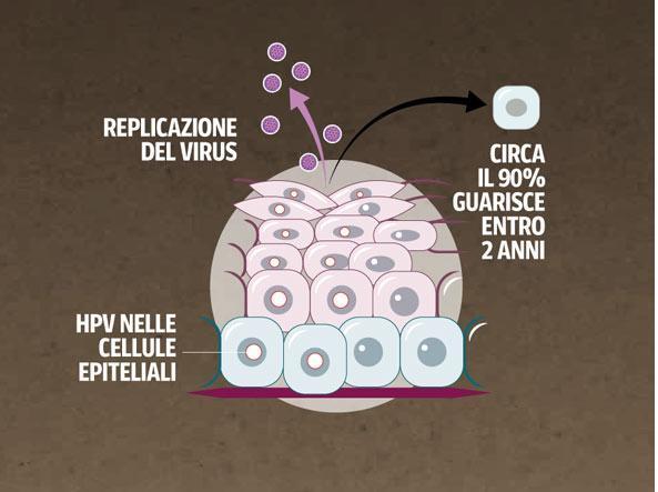 Miere împachetări varicele celulita