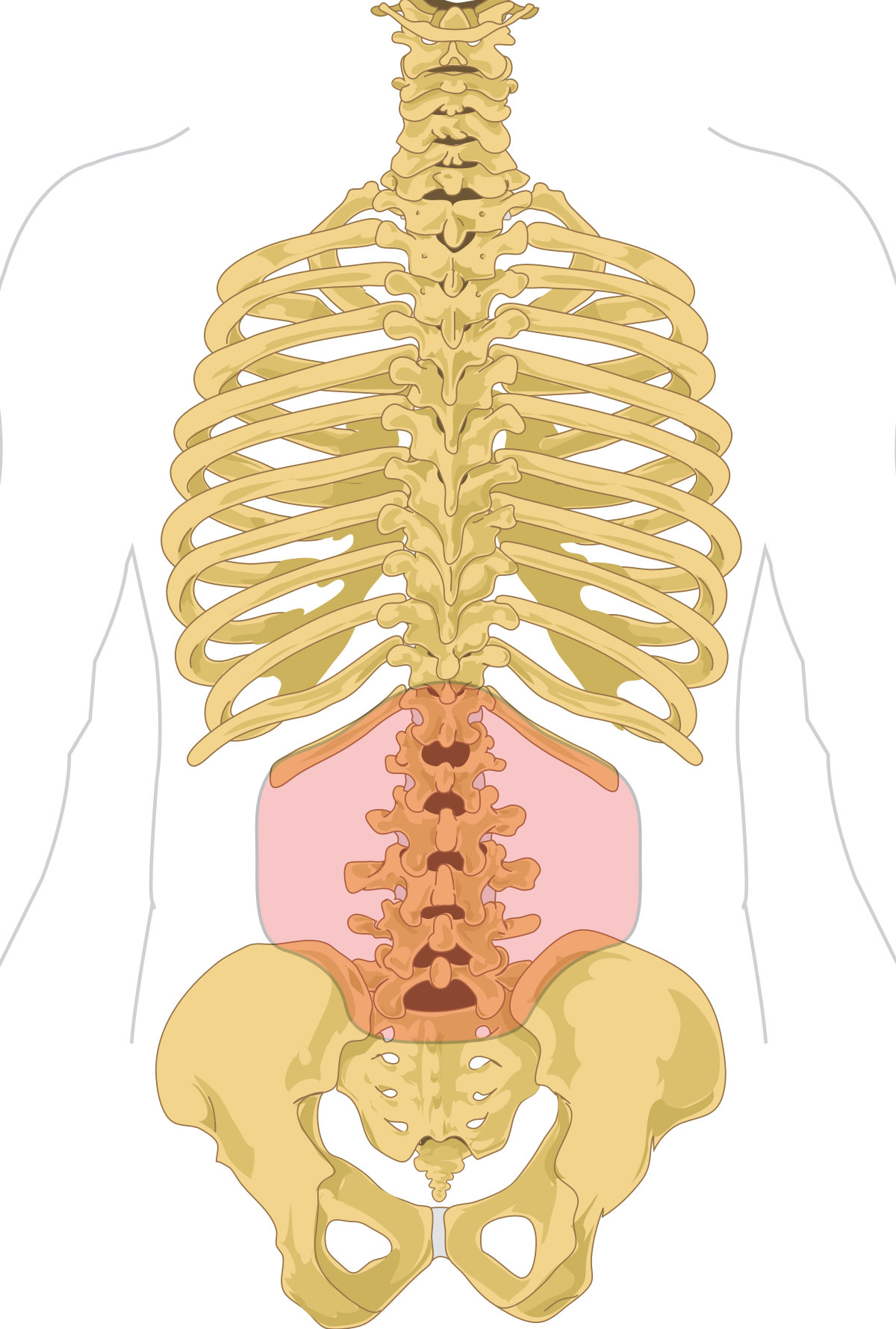 metastatic cancer and back pain