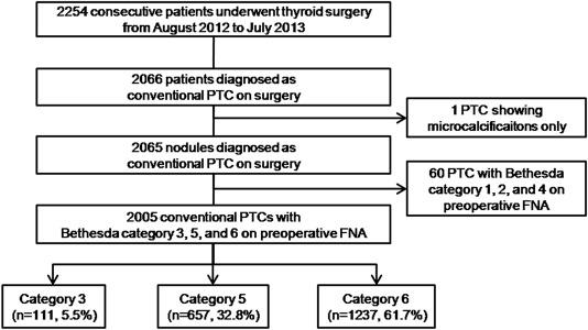 papillary thyroid cancer category 6