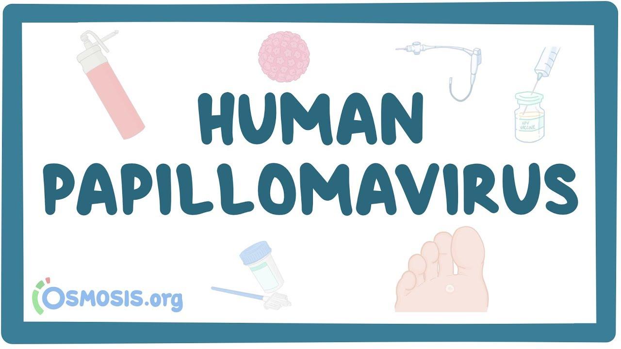 papillomavirus behandeling