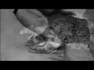 Parazitii - Goana Dupa Iluzii (nr) + Versuri | Hip Hop