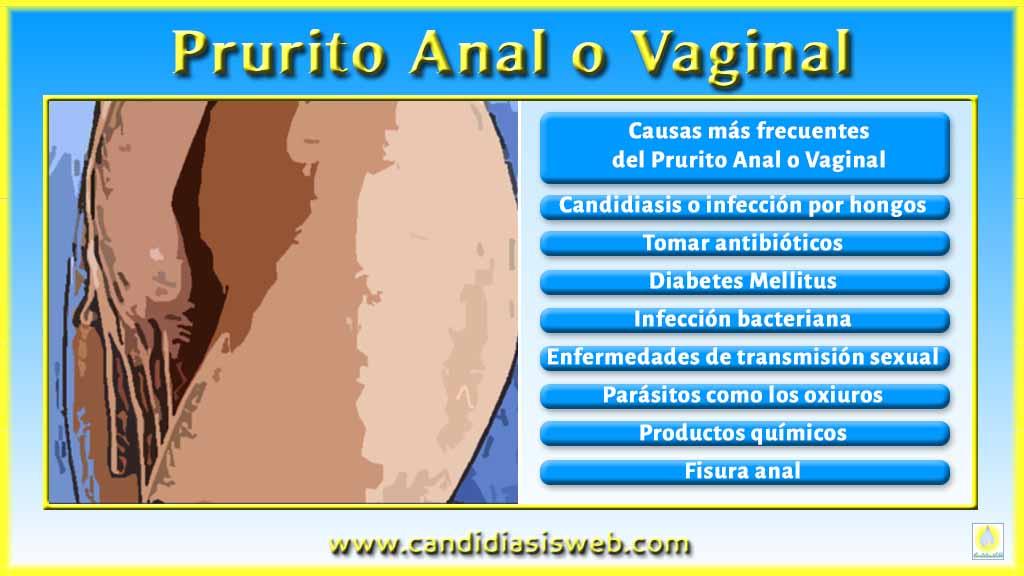 que es oxiuros y candidiasis treatment of helminth infections