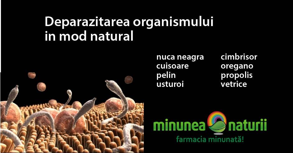 schema tratament paraziti intestinali