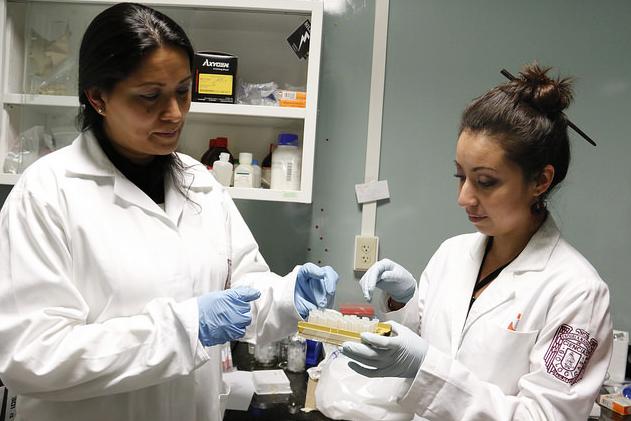 Oameni de stiință mexicani au găsit un tratament impotriva HPV   SACCSIV - blog ortodox