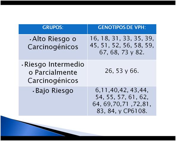 Modelo neuronal para el diagnóstico del VPH de alto riesgo
