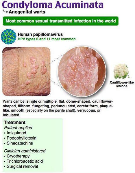 Cutaneous manifestations in pregnancy: Pre-existing skin diseases – Health & Beauty Online Journal
