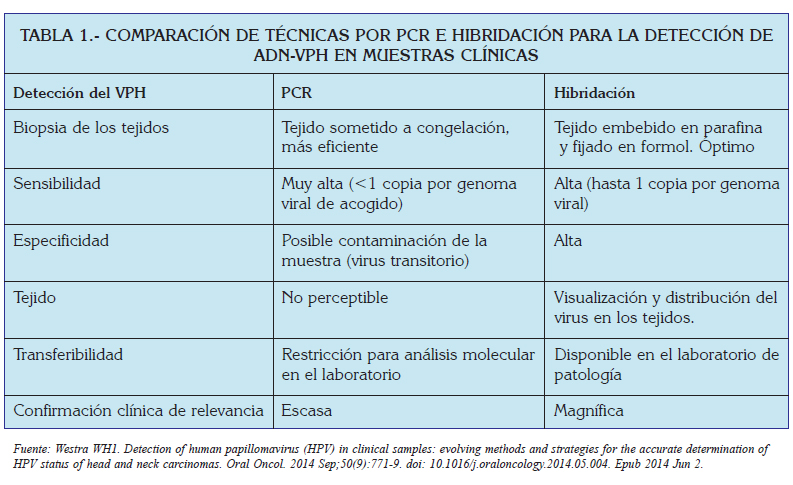 caracteristica del papiloma humano