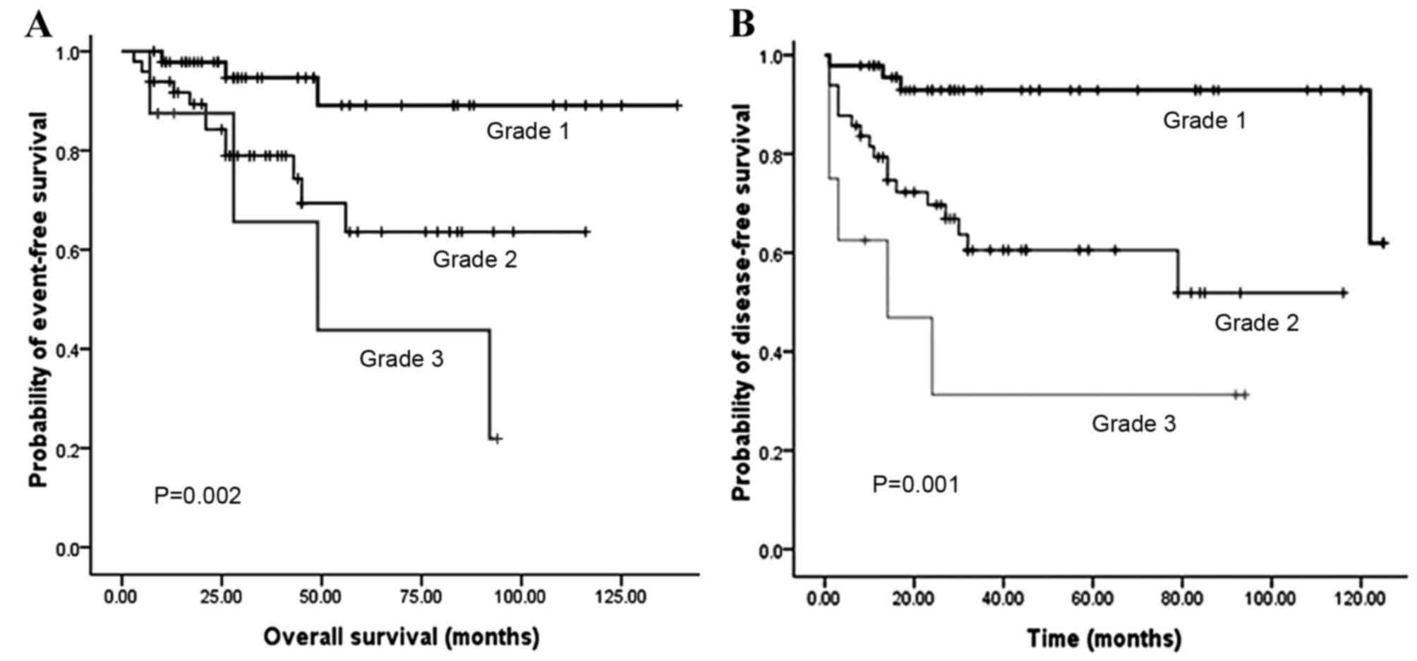 endocrine cancer pancreas prognosis hpv high risk pool