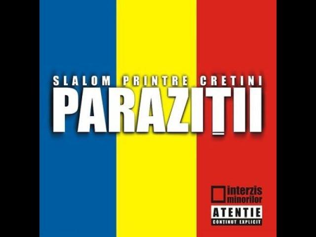 Paraziții - Something to say