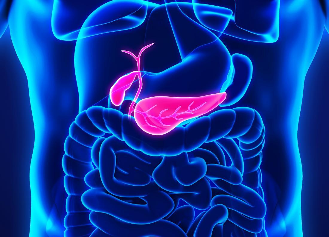 cancer pancreatic blog