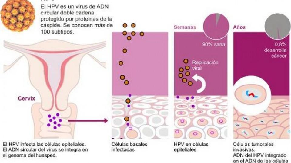 Cum e să ai herpes genital, ca tipă