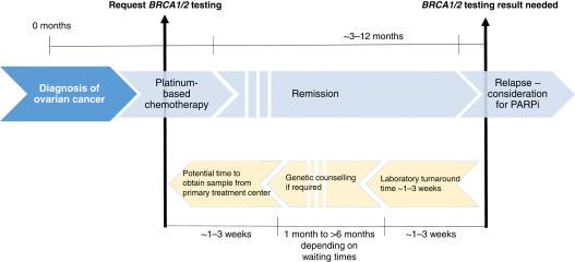 endometrial cancer classification cancer vesicula biliar etapa 4