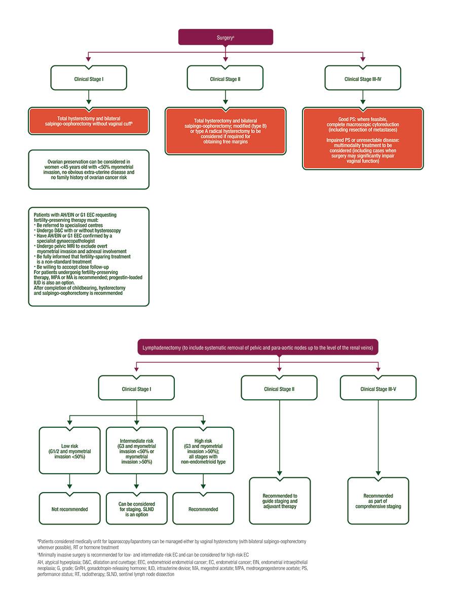 Ghidul clinic pentru cancerul de endometru
