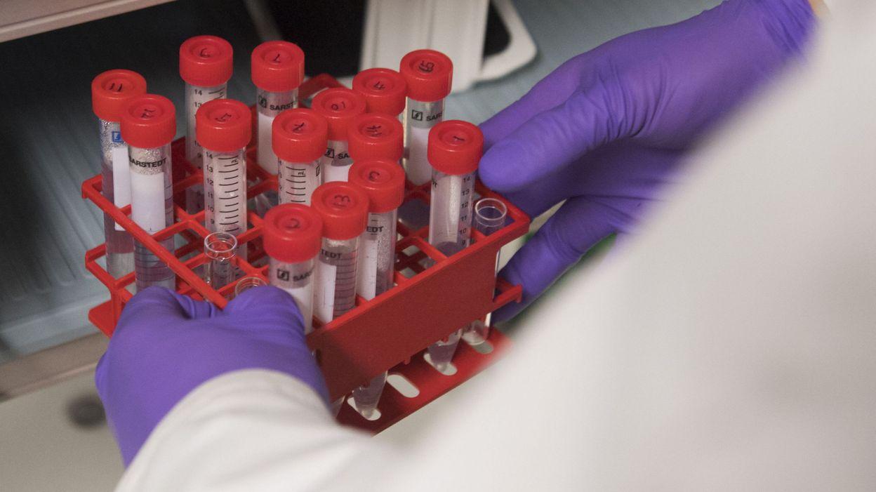 papiloma humano se quita symptomes anemie